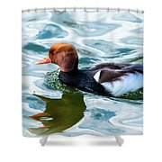 Red Crested Red Beak Red Eye Duck Shower Curtain