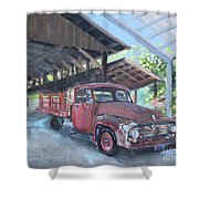 Red Ford And Pink Flowers Shower Curtain