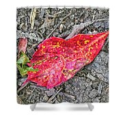 Red Leaf On Green's Hill Shower Curtain