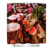 Red Logs Shower Curtain