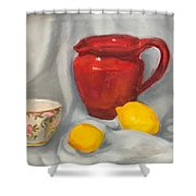 Red Pitcher Shower Curtain