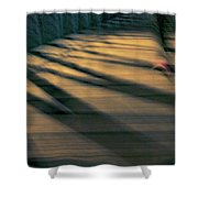 Red Shoe Shower Curtain