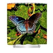 Red-spotted Purple Butterfly 017 Shower Curtain