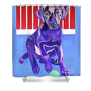 Red, White And Blue Waiting For You Shower Curtain