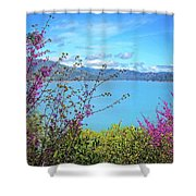 Redbud Beauty Along The Shore Of Shasta Lake Shower Curtain