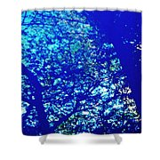 Reflection On A Blue Automobile 3 Shower Curtain