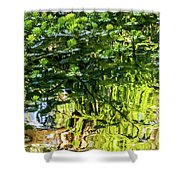 Reflections In Green Shower Curtain by Kate Brown