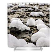 Rhine Winter Shower Curtain