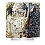 Rhino Zen Shower Curtain