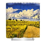 Road To Nowwhere Shower Curtain