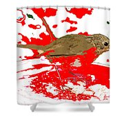 Robin And Snow Shower Curtain