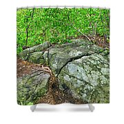 Rock On Green's Hill Shower Curtain