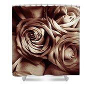 Rose Carmine Shower Curtain