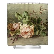 Roses, 19th Century Shower Curtain
