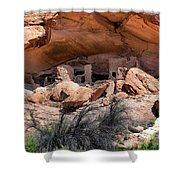 Ruins At Butler On The San Juan River  Shower Curtain