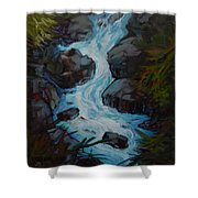 Rushing To The Sea Shower Curtain