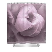 Sacred Rose Shower Curtain