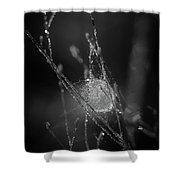 Sacrificial Shower Curtain by Michelle Wermuth