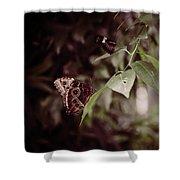 Safety Shower Curtain by Michelle Wermuth