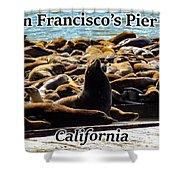 San Francisco's Pier 39 Walruses 1 Shower Curtain