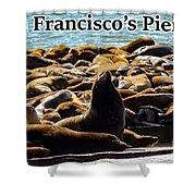 San Francisco's Pier 39 Walruses 2 Shower Curtain