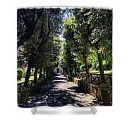 San Paolo Alle Tre Fontane Shower Curtain
