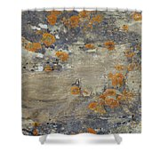 Sand, Charcoal, And Rust Shower Curtain