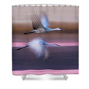 Sandhill Cranes Flying Over Lake Shower Curtain
