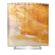 Sandstorm Shower Curtain