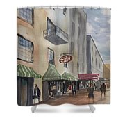 Savannah River Street Shower Curtain