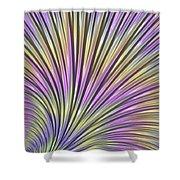 Scallop Shower Curtain