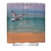 Seagull At Dusk Shower Curtain