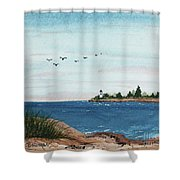 Seagulls Over Lighthouse Cove Shower Curtain