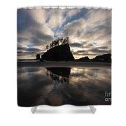 Second Beach Seastack Clarity Shower Curtain