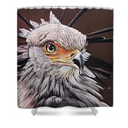 Secretary Bird Shower Curtain