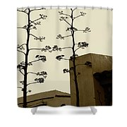 Sedona Series - Desert City Shower Curtain