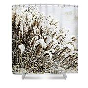 Sepia Snow Shower Curtain