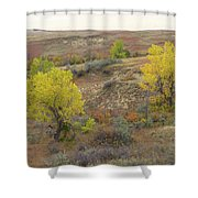 September Trees Reverie Shower Curtain
