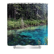 Seraph's Spring Shower Curtain