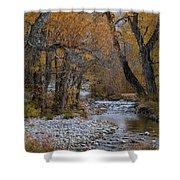 Serene Stream In Autumn Shower Curtain