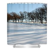 Shadows In The Snow Shower Curtain