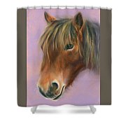 Shaggy Brown Pony Shower Curtain by MM Anderson