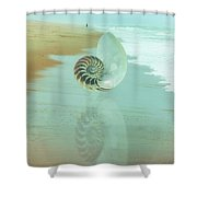 Shell Reflections In The Sand In The Soft Dawn Shower Curtain