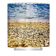 Shell Shocke Shower Curtain