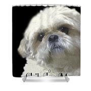 Shih Tzu For Mom Shower Curtain
