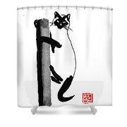 Siamese 03 Shower Curtain