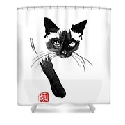Siamese 4 Shower Curtain