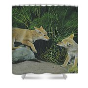 Sibling Rivalry Shower Curtain
