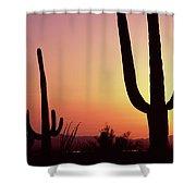 Silhouette Of Saguaro Cacti Carnegiea Shower Curtain