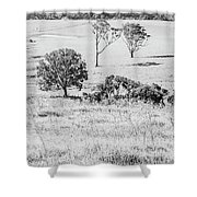 Simple Country Wonders Shower Curtain